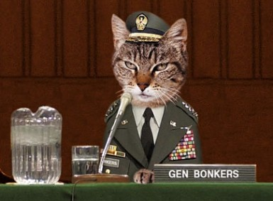Fringe Binge '13: Cat Commander
