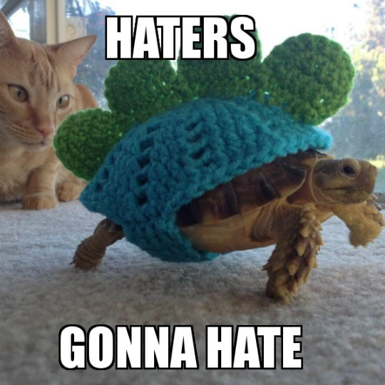 haters-gonna-hate-540x540
